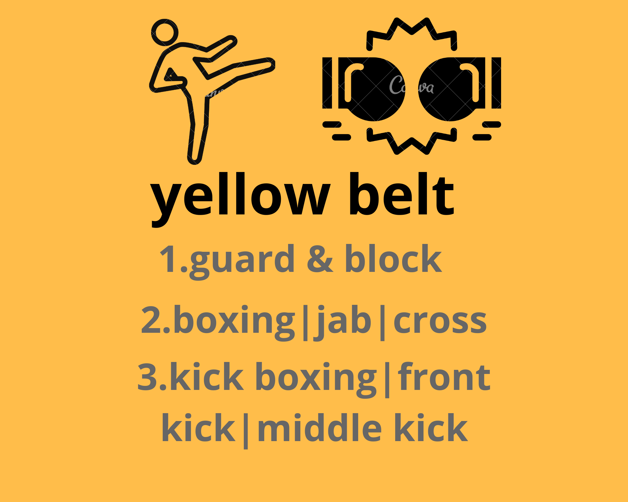 Kickboxing belts