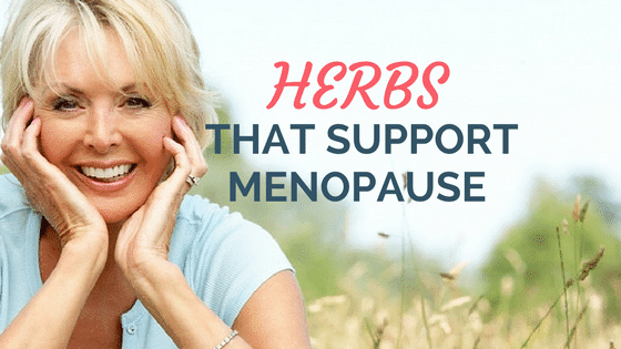 Natural Herbs That Support Menopause