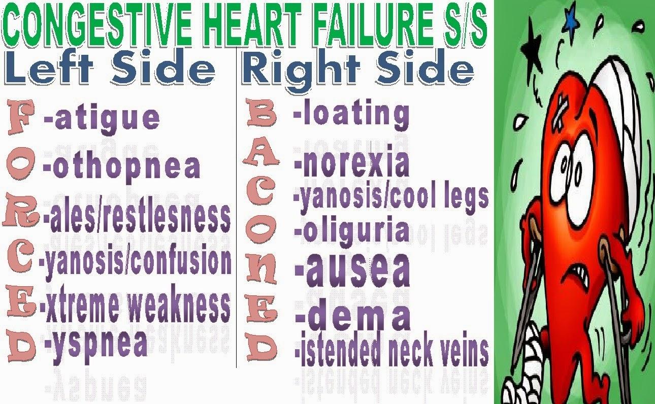 Congestive Heart Failure Essay