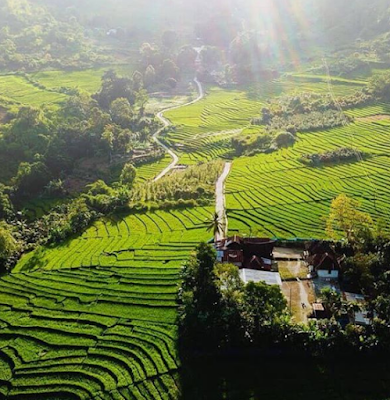 Desa Sigapiton, Indahnya Dan Kayanya Alamku | Wonderful Tao Toba