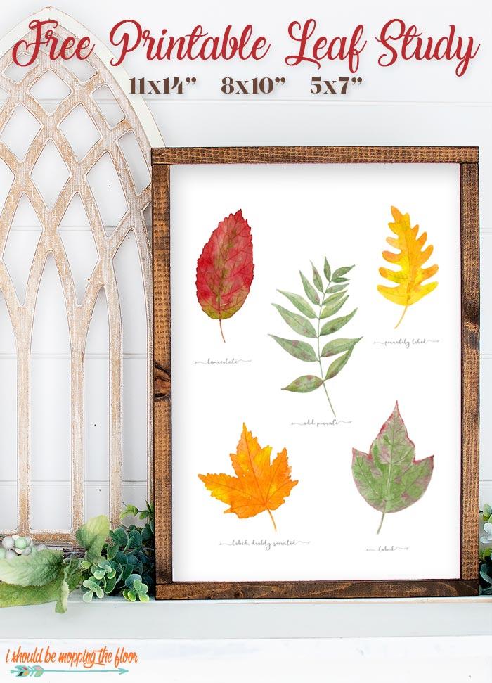 Printable Fall Leaves