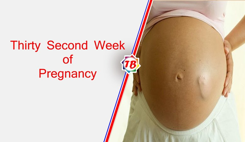 Thirty Second Week of Pregnancy
