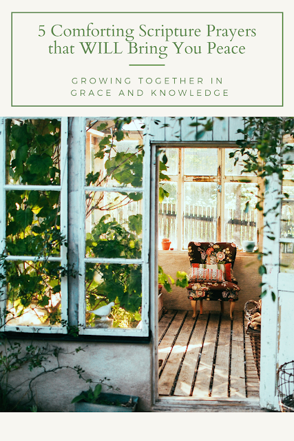 open door to porch will floral chair in the foreground, baskets on the floor on the right and green vines growing up the window panes of the porch