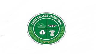 Cadet College Jaffarabad Job Advertisement For Govt Lecturer Vacancies in Pakistan Jobs 2021