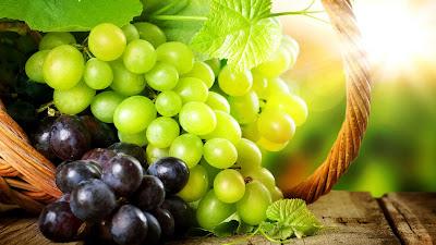 foto buah anggur