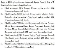 Akhirnya Kemenpan Menerbitkan Aturan Mengenai Kelulusan Tes SKD