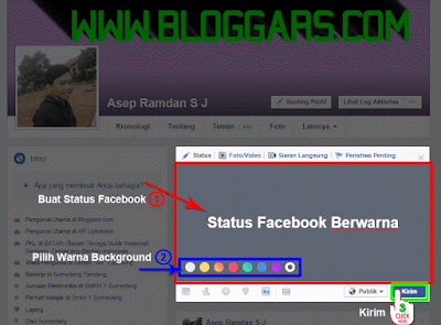 Status facebook warna di web
