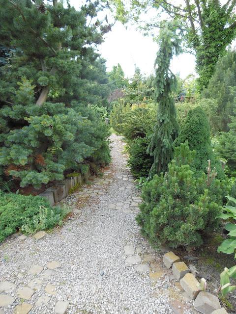 ścieżka żwirowa w ogrodzie