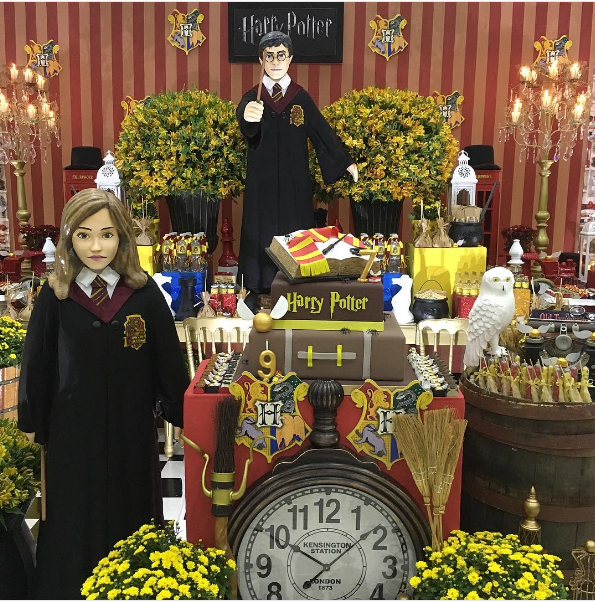 fiesta tematica harry potter