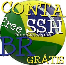MICROEIC COM - SITE CONTA SSH (BR) BRASILEIRA GRÁTIS FREE