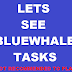 Bluewhale Tasks : Whats inside Bluewhale?