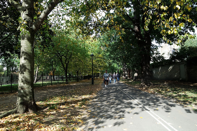 London, londres, blog, street, kensington,Holland park, automun, fall in london