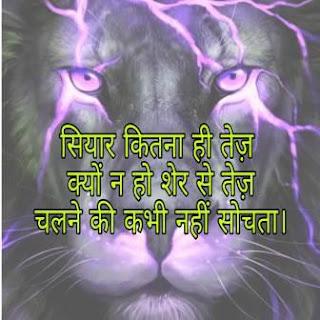 sher dp status