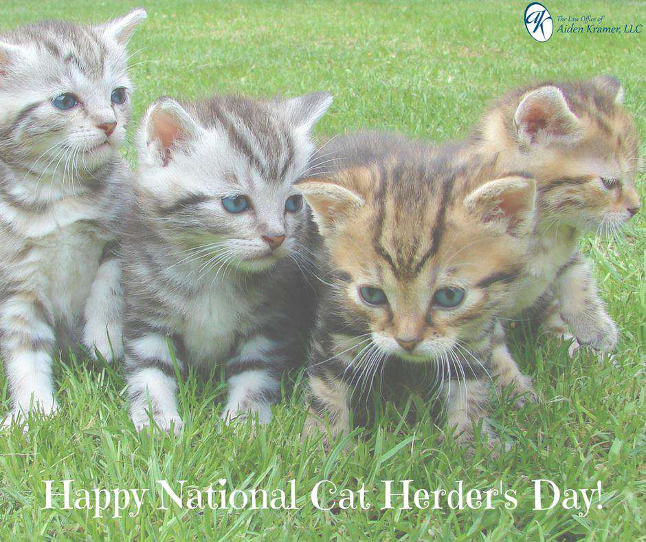 National Cat Herders Day Wishes