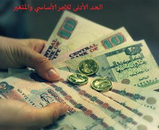 ما هو الحد الأقصى الأساسي والمتغير ٢٠٢٠ ~ تجديد | تعرف علي الحد الأقصى للاجر التأميني 2020 - شرح حساب الاجر التاميني 2020 - الحد الأدنى للاجر الأساسي والمتغير 2020 - ما هو الحد الأدنى والأقصى لأجر الاشتراك التأميني 2020 في مصر