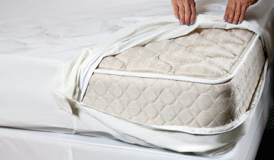 Bed Bug Signs in Mattress