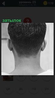 Вид сзади на мужской затылок после аккуратной стрижки