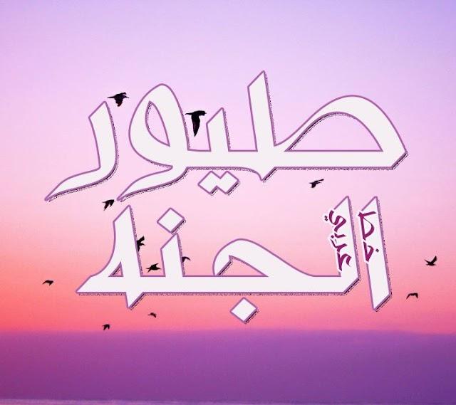 خط عربي للتصميم Arabic fonts 2020