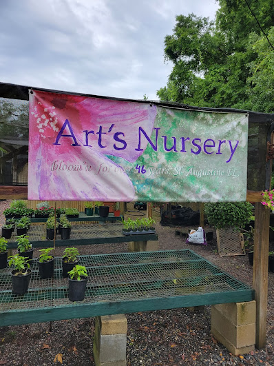 Arts Nursery St. Augustine