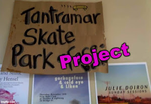 click on pic - Tantramar Skate Park Project