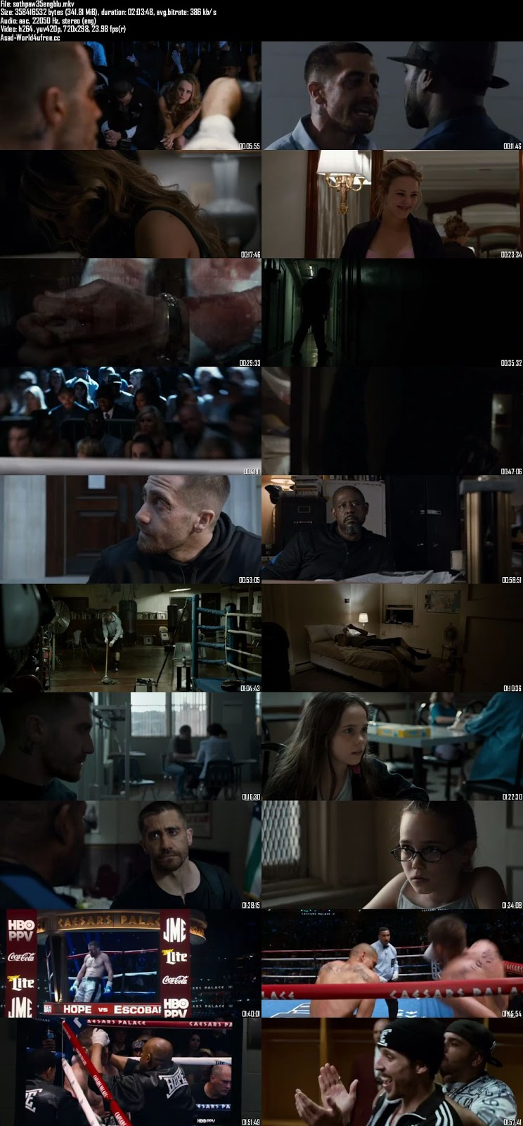 Southpaw 2015 BRRip 480p 300mb