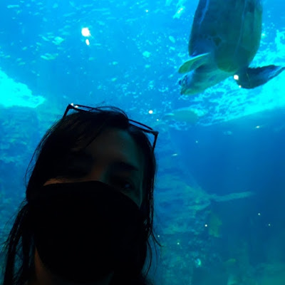 Girl in face mask takes selfie with a turtle