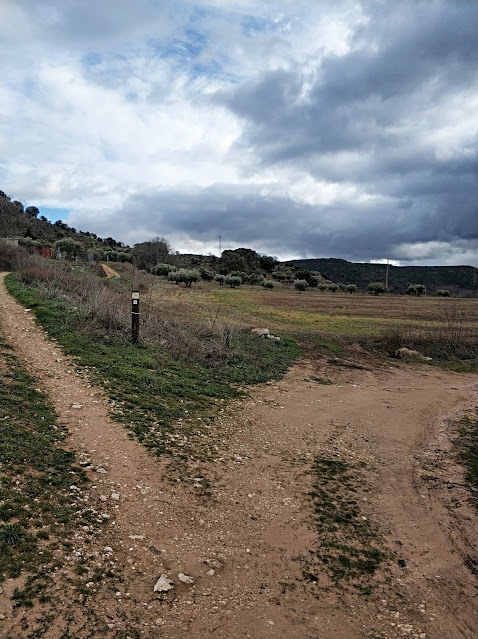 Ruta de los quejigares de Brihuega