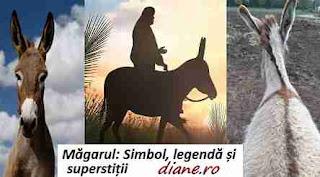 Măgarul: Simbol, legendă și superstiții
