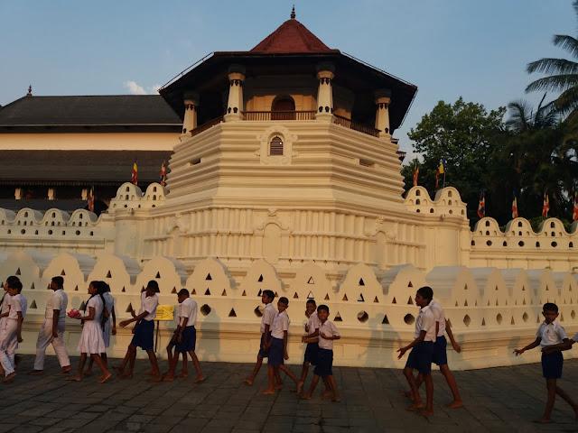 templo diente buda