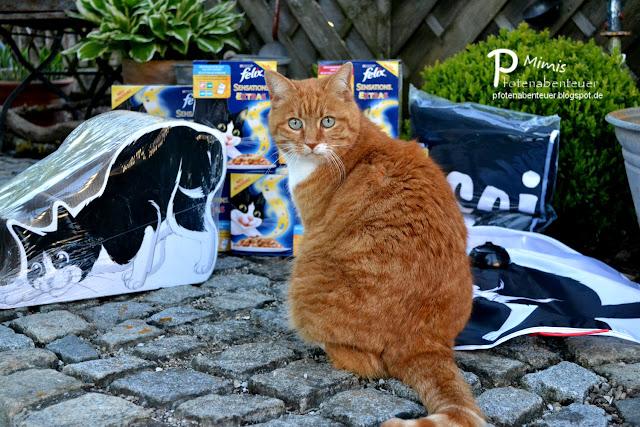 Katze Mimi und ihr FELIX-Paket