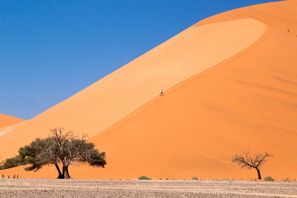 RED DUNES, NAMIBIA