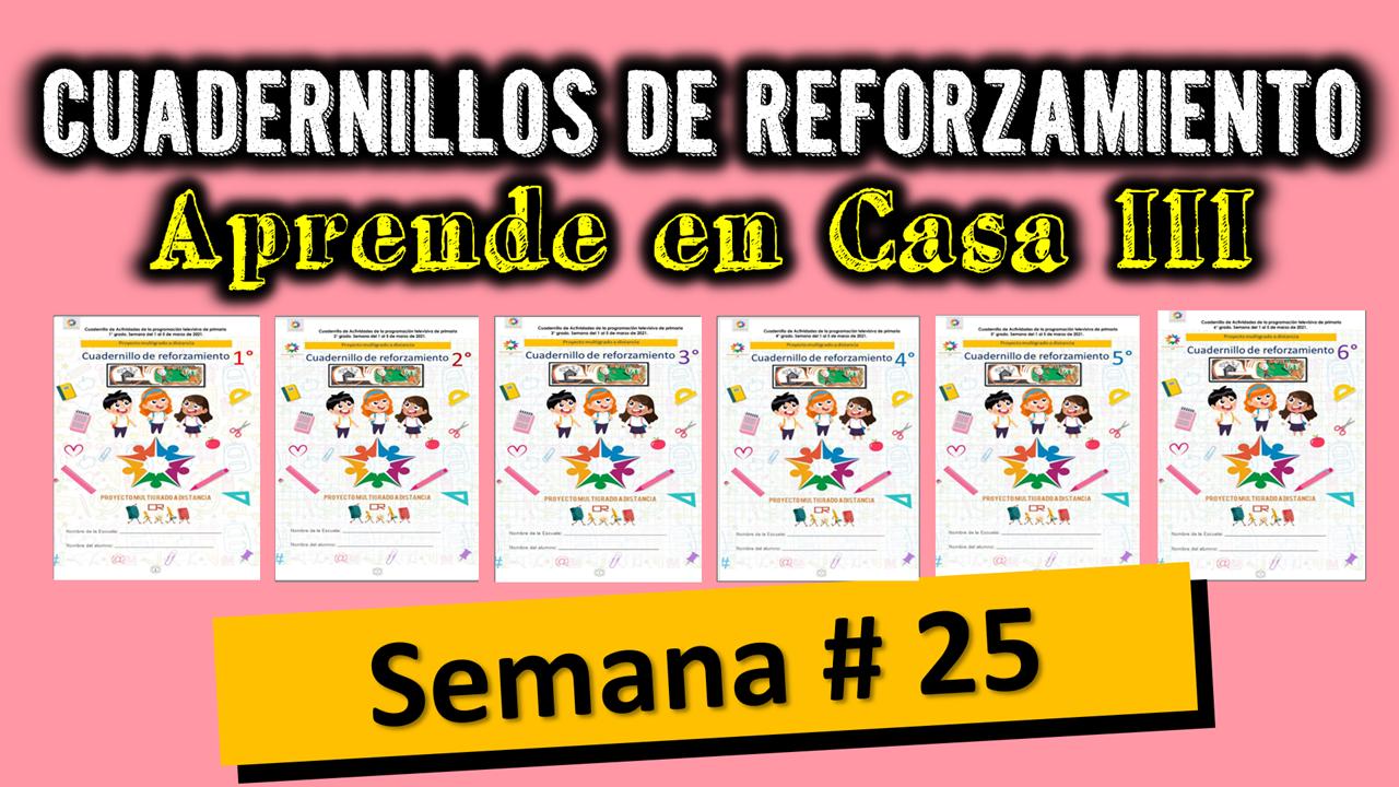CUADERNILLOS MULTIGRADO CON ACTIVIDADES PARA TRABAJAR A DISTANCIA LA SEMANA # 25 DE APRENDE EN CASA III