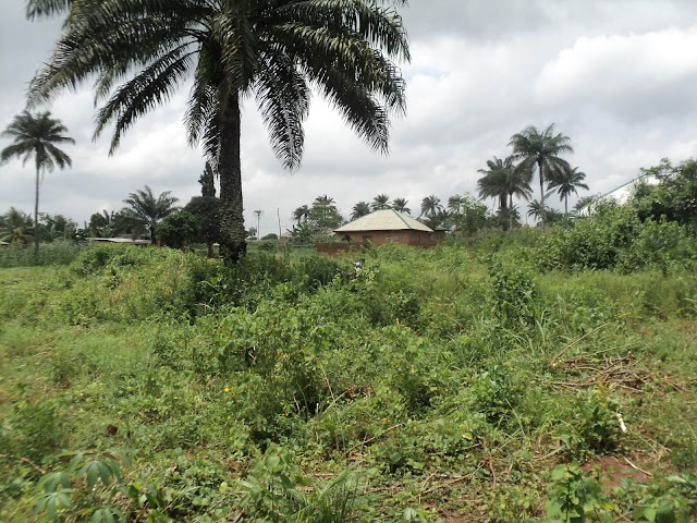Lands at Ibekan Community Second View