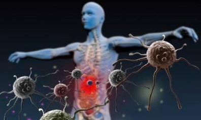Inmunidad adaptativa y biologia