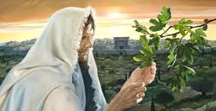 Cantos missa quinto Domingo Comum