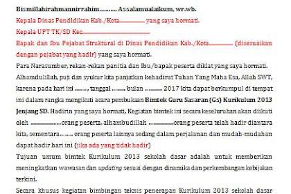 Contoh Laporan Kegiatan BIMTEK Guru Sasaran Kurikulum 2013 Revisi 2017