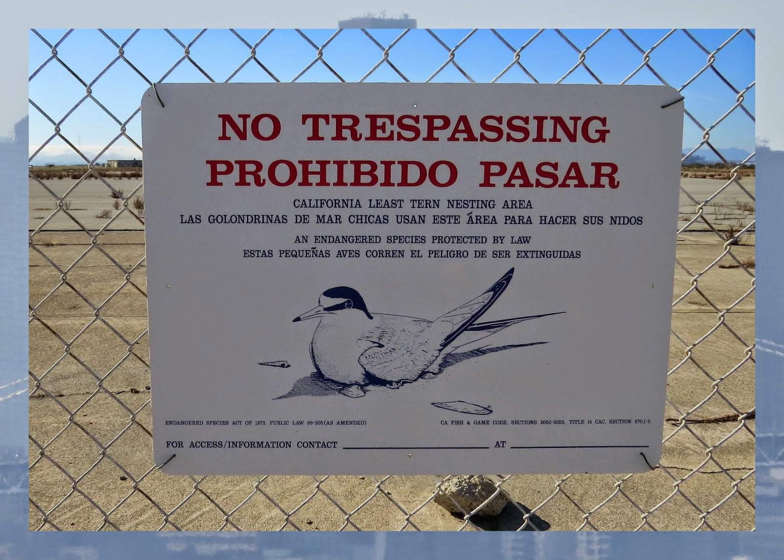 No Trespassing at Rock Wal Winery - Lesser Tern Nesting Sign