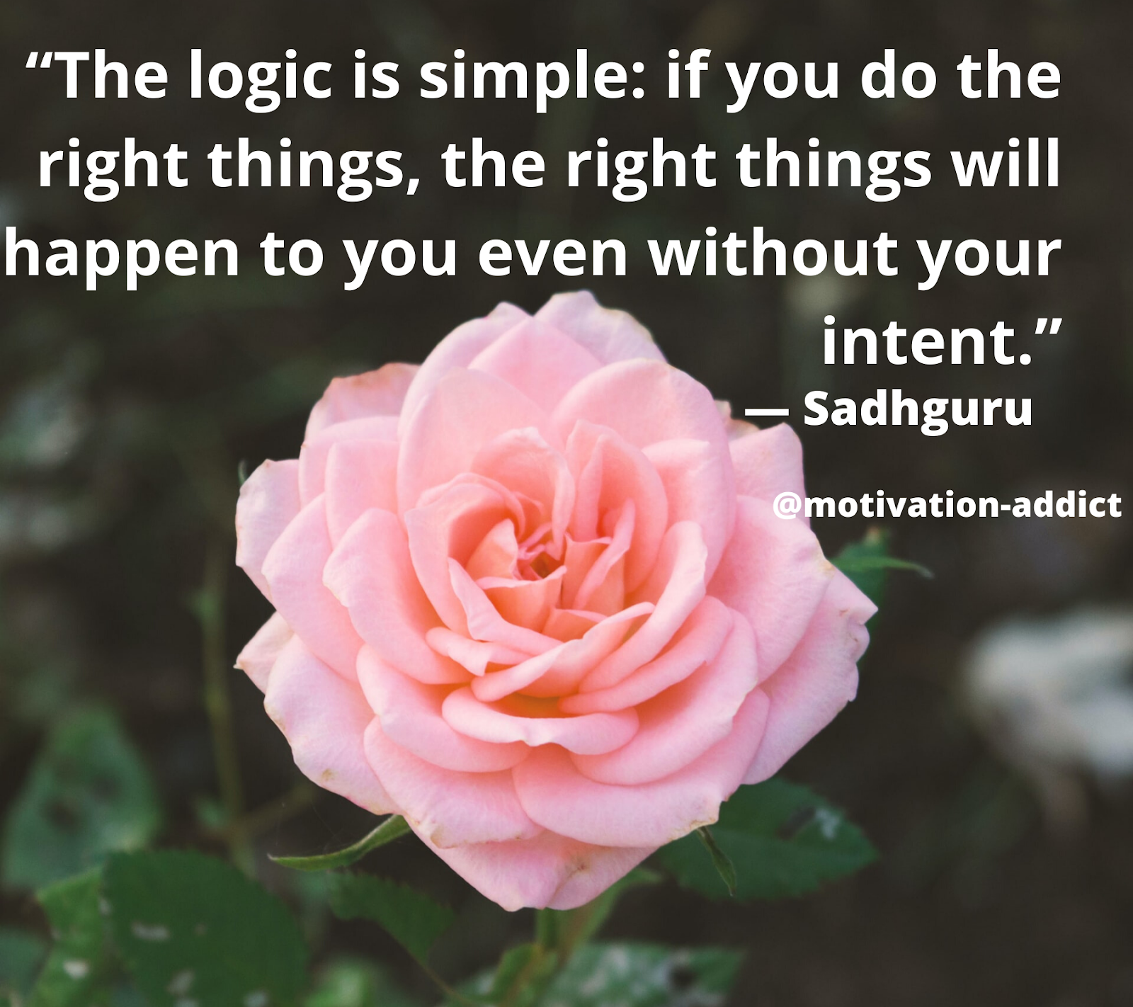 """ THE LOGIC IS SIMPLE: IF YOU DO RIGHT THINGS, THE RIGHT THINGS WILL HAPPENS TO YOU , JAGGI VASUDEV"