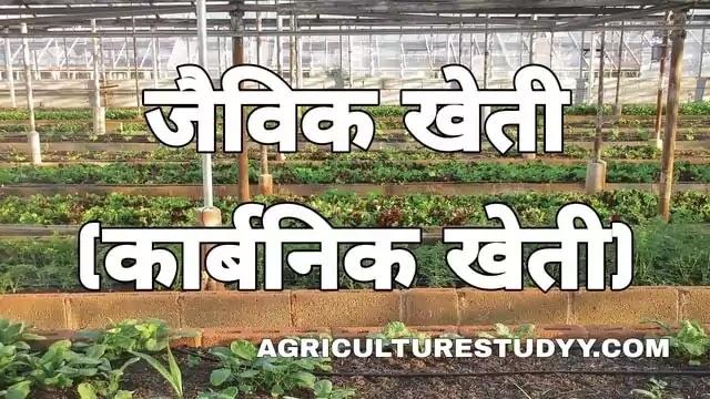 जैविक खेती क्या है, organic farming in hindi, कार्बनिक खेती, ऑर्गेनिक फार्मिंग, jevik kheti, जैविक खेती की परिभाषा, जैविक खेती के लाभ, जैविक कृषि, खाद