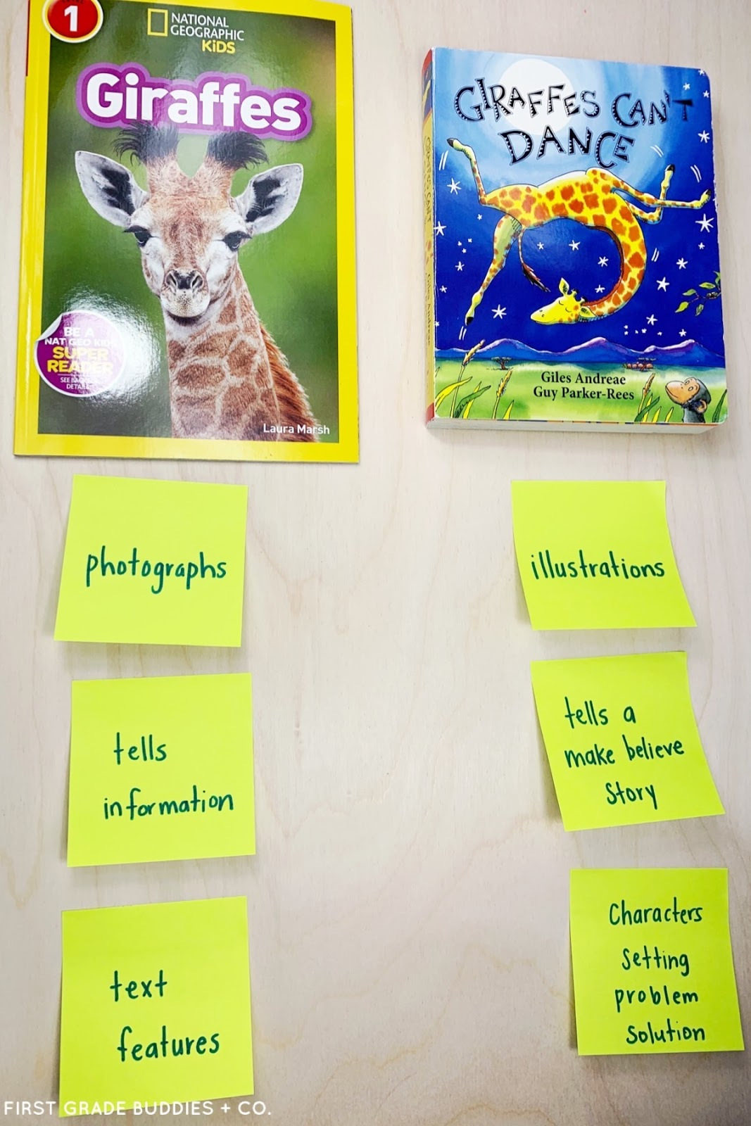 Fiction vs. Nonfiction Text in the Primary Grades   First Grade Buddies [ 1600 x 1067 Pixel ]