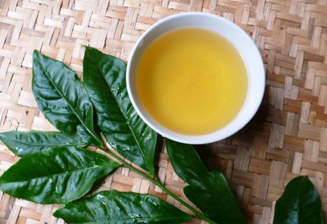 Chữa huyết trắng bằng lá trà xanh được rất nhiều người biết đến