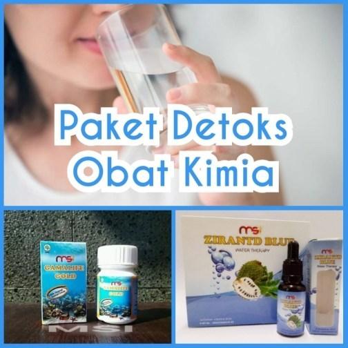 Paket Detoks Obat Kimia