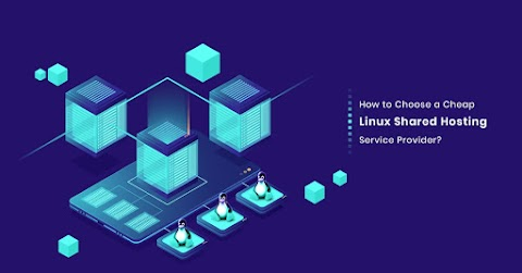 How to Choose a Cheap Linux Shared Hosting Service Provider?