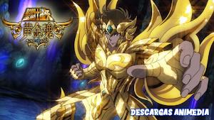 Saint Seiya Soul of Gold 13/13 Audio: Latino Servidor: MediaFire