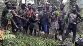 Kelompok Kriminal Bersenjata Papua Pantas Ditangkap