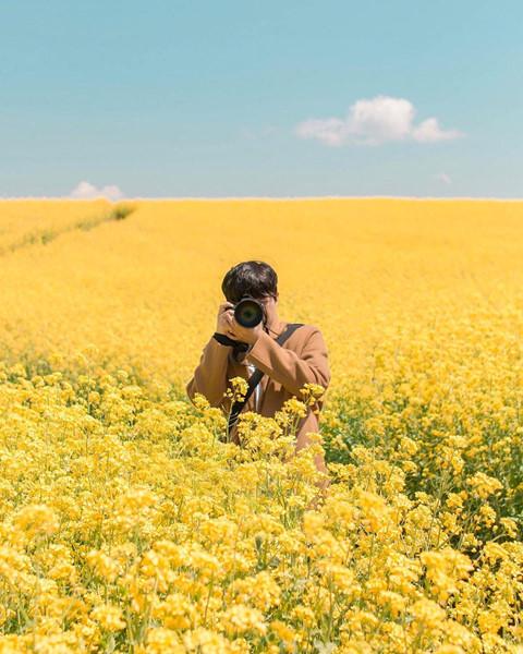 Khi nhắc đến những mùa hoa thu hút khách du lịch, người ta thường nghĩ đến sắc hồng của hoa anh đào. Tuy nhiên, phải thật sự tận mắt thấy vẻ đẹp tươi tắn, thơ mộng của những cánh đồng hoa cải vàng, bạn mới nhận ra mùa hoa anh đào không phải là thời điểm duy nhất đáng trông đợi hàng năm.
