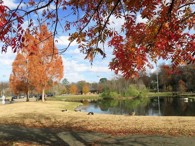 Avondale Park, Birmingham, Alabama. December 2020.