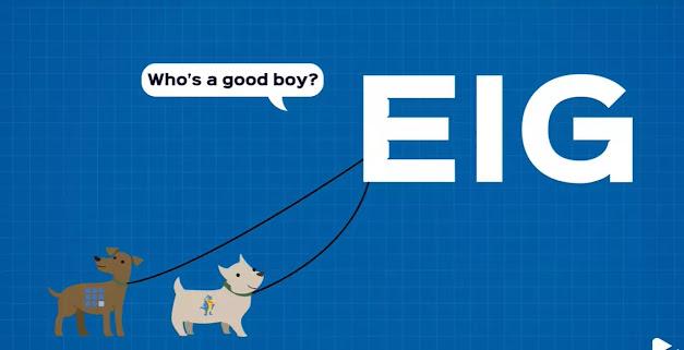 EIG hosting , Endurance International Group web hosting:- It has own more than 60 webhosting services ....