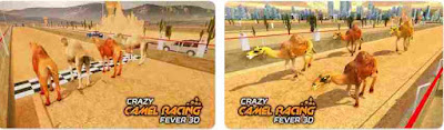 Crazy Camel Racing Fever 3D