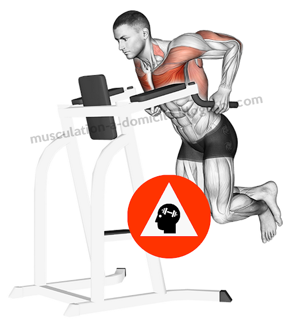 musculation exercice dips pectoraux triceps barres paralléles